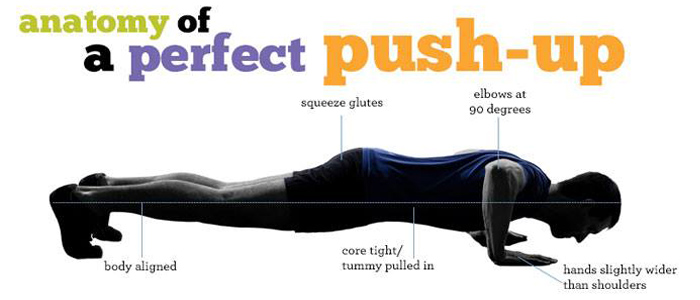 Go Back > Gallery For > Perfect Pushup Schedule